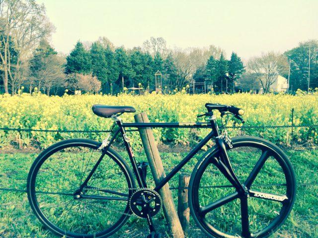菜の花畑のピストバイク
