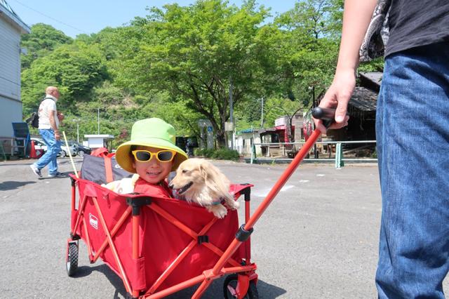 コールマンのアウトドアワゴンに子供と犬と荷物を積む