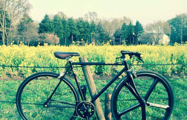 春を満喫しながら移動手段としてのピストバイクを考える