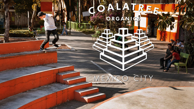 """COALATREE ORGANICS""の新着ビデオ""Mexico City"""